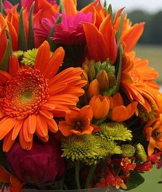 Tropical wedding flowers Love these colors! Orange Wedding Flower Arrangements, Tropical Wedding Bouquets, Tropical Wedding Decor, Orange Wedding Flowers, Beach Flowers, Tropical Flowers, Tropical Weddings, Tropical Party, Pool Wedding