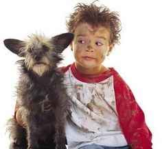 24 Best Matt Images World Poverty Halloween Costumes To