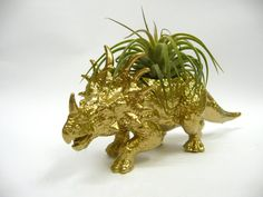 Gold Styracosaurus Dinosaur Planter with Air Plant by WhatJesseDid