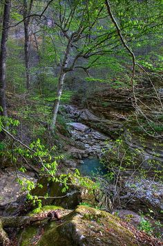 ✮ Lost Valley Canyon - Buffalo National River - Ponca, Arkansas
