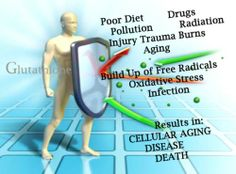 Tips to Optimize your Glutathione Levels #Glutathione-Production #Avocados