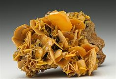 Crystals of Wulfenite are well displayed on the specimen as a platy orange-yellow octagonal habit measuring to 1.7cm intergrown over two-thirds of an altered limestone matrix. From the Stefanie Mine, Bad Bleiberg, Austria.