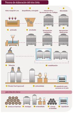 Grafico: el proceso de elaboración del #vino tinto