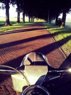 Riding my bike on a summer evening (J)