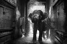 I love Water !  Photo by r prasana venkatesh -- National Geographic Your Shot