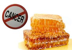 Propolis Pengobatan Alami Anti Kanker