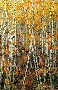 Graeme Stevenson - Autumn stags
