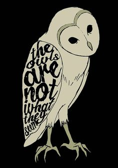 The Owls Are Not What They Seem - Twin Peaks - 90's - Spooky - David Lynch…