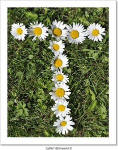 Free art print of Letters of daisies. Get up to 10 Gallery-Quality Art Prints for Free.