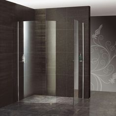Douche entièrement vitrée