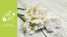 цветы из фоамирана: 22 тыс изображений найдено в Яндекс.Картинках