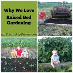 I have to admit that I was a reluctant convert to raised bed gardening. I grew up gardening in tilled Raised Garden Beds, Raised Beds, Simple Garden Designs, Garden Netting, Natural Farming, Inside Plants, North Country, Square Foot Gardening, Back Gardens