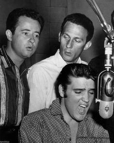Elvis Presley 8x10 Photo 079 | eBay