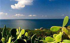 Pantelleria / Sicilia - Dammusi Comfort