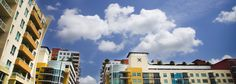 83 Degrees - Tampa Bay