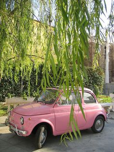 Fiat 500 Rosa #fiat500