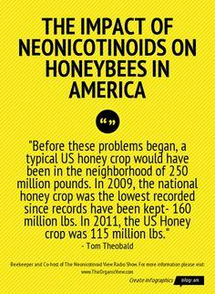 The Impact of Neonicotinoids