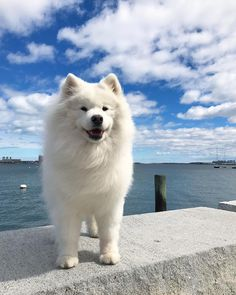 You can't see me - I'm a cloud!