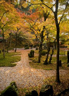 Komyozenji Zen Garden in Dazaifu Japan.  Our reading this week didn't mention WHY they add the circular design into the garden.  I just like the simplicity of this garden style, how there is much less to distract the eyes and one can focus on their meditation or conversation.