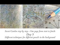 Secret Garden Step by Step - Day 5 - Different Techniques for Differenti Pencils in The Background