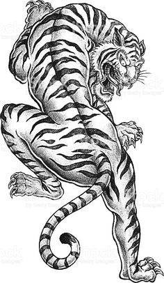 stock-illustration-14913966-shaded-asian-tiger.jpg (594×1024)