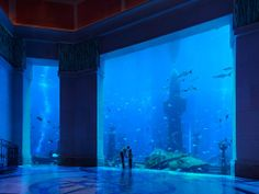 Book your holiday to the Atlantis The Palm resort in Dubai. This 5 star hotel is built on the Palm Jumeirah. Get the best Atlantis deals online with Travelbag. Hotel Dubai, Dubai Resorts, Hotels And Resorts, Dubai Uae, Dubai Trip, Top Hotels, Atlantis, Winchester, Mon Zoo