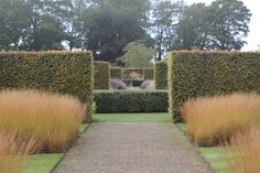Scampston Hall Walled Garden in Malton, North Yorkshire, middle of October, designed by Piet Oudolf.  Drifts of Grass  with views to the Spring Box Gardens