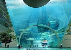 Chinese Company Wants To Build Underwater City