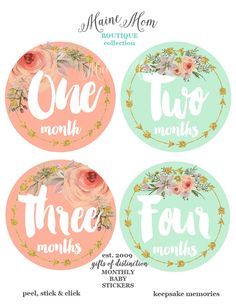 Baby Girl Monthly Stickers Baby Month Stickers by MaineMomBoutique