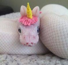 python with unicorn hat