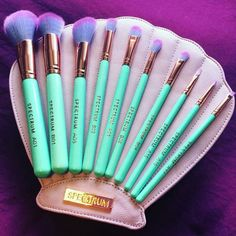 I want this brush set.