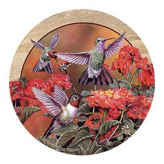 Thirstystone Drink Coaster Set, Hummingbirds and Flowers * Don't get left behind, see this great  product : Kitchen Utensils and Gadgets