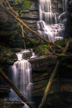 http://ift.tt/1ZY8ZTJ #Nature breathtaking #Photos Like a Dream by HatCatPhotography http://ift.tt/1nUPQ3H