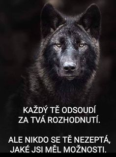 True Quotes About Life, Life Quotes, Wolf Quotes, Angel And Devil, Story Quotes, Powerful Words, True Words, True Stories, Quotations
