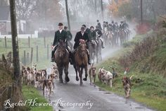 Hunt Season in Ireland