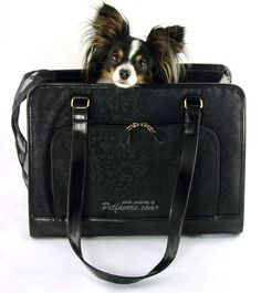 Sherpa Toronto Tote Pet Carrier - Petfavors.com - The on-line store for pampered pets. Designer pet beds, pet carriers, outdoor cat enclosures, pet strollers