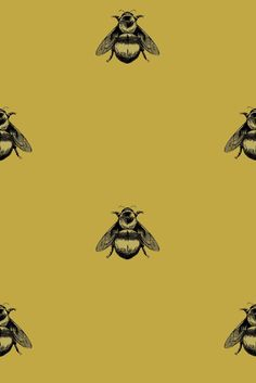 Timorous Beasties Wallcoverings - Napoleon Bee