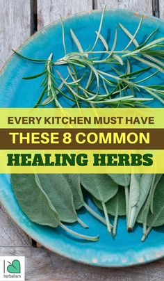 In this article, you will find 8 healing herbs that we must have in our kitchen and also learn the healing benefits from those herbs as well.