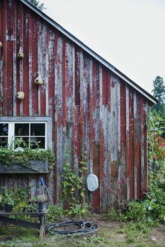 Blackberry Farm's garden shed | Williams-Sonoma Taste