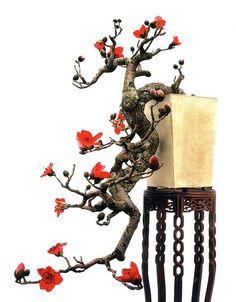Bonsai Trees for Beginners Ficus Bonsai, Indoor Bonsai Tree, Bonsai Art, Bonsai Plants, Bonsai Garden, Bonsai Trees, Ikebana, China Garden, Tree Care