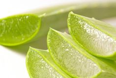 Aloe vera is useful for preventing the aging of the skin. Aloe vera gel is helpful in improving the lesions. It stabilizes blood sugar and reduces triglycerides in diabetics. It prevents kidney stones and protects the body from oxalates in coffee and tea. Aloe Vera Gel, Aloe Vera For Hair, Natural Treatments, Natural Remedies, Natural Sunburn Relief, Health And Beauty, Health And Wellness, Le Psoriasis, Sunburn Remedies