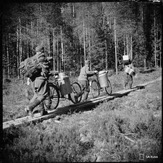 Finnish Wartime Photograph Archive Night Shadow, Fight For Us, World War I, Finland, Denmark, Wwii, Norway, Sweden, Past