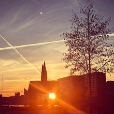 Smuk afslutning på en smuk dag. I morgen er sneen nok væk igen men hvor var det fint så længe det varede. #solnedgangsvagten #københavnshavn #københavnerliv #copenhagen #cphlove #træer #treeporn #treestagram #kbhpol