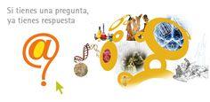 Pregunte a las bibliotecas / Ask a librarian Spanish Red Internet, Spanish, Digital, Blog, Style, Index Cards, Books, Fine Art, Deporte