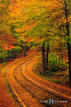 Whether you're driving, hiking, biking or wandering, Michigan's hidden gems are yours to discover. Hit the open road and experience fall at its finest, plan your Pure Michigan road trip today.