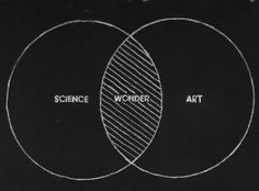 In my world, science and art coincide much more... actually they may as well be the same circle :)
