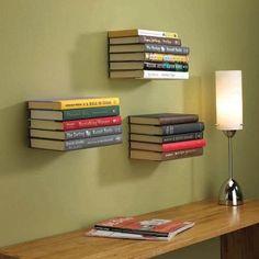Conceal Bookshelf $15.00