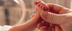 Premature babies 101 includes advice for parents of preemies about coping with emotions, what to expect in the NICU, and preventing preterm births. Preemie Babies, Premature Baby, Preemies, Newborn Babies, Cincinnati, Baby Week By Week, Papillomavirus, Baby Weeks, Attachment Parenting