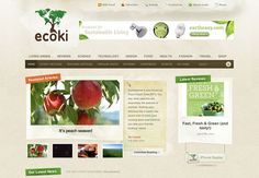 Organic web site design: ecoki.com