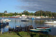 #Strahan #Tasmania ~ photo by Dan Fellow, article for think-tasmania.com Australian Road Trip, Cruise Boat, Wooden Boats, Tasmania, Road Trips, Wilderness, Tourism, Dan, Household